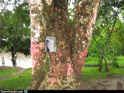 bad puns dual use green energy phone tree - 4998447360