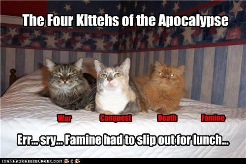 apocalypse,caption,captioned,cat,Cats,food,four horsemen of the apocalypse,lunch
