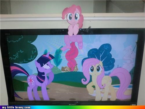 fluttershy IRL pinkie pie TV twilight sparkle - 5000563968