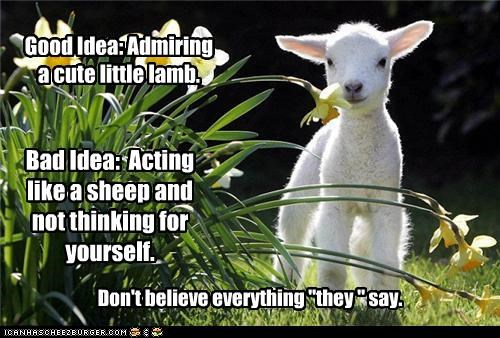 "Good Idea: Admiring a cute little lamb. Bad Idea: Acting like a sheep and not thinking for yourself. Don't believe everything ""they "" say."