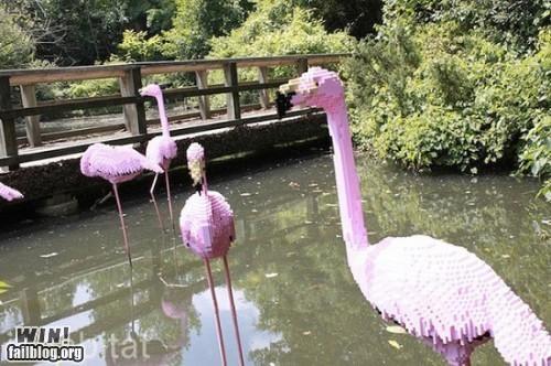 flamingo,lego,zoo