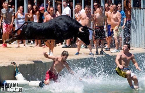 bull dangerous missile - 5001860352
