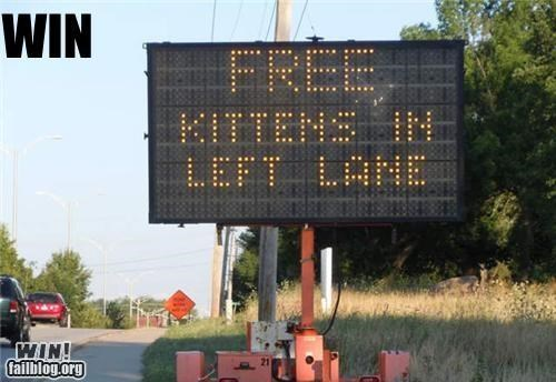 free kittens road sign traffic