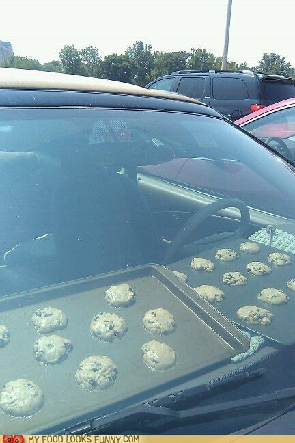 car,cook,cookies,dashboard,heatstroke,hot,omg,oven