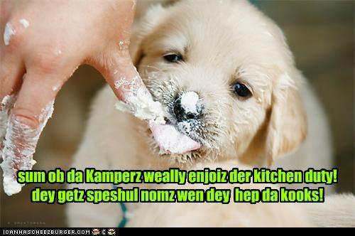 Cheezburger Image 5002443520