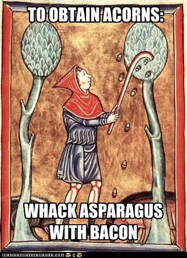 TO OBTAIN ACORNS: WHACK ASPARAGUS WITH BACON