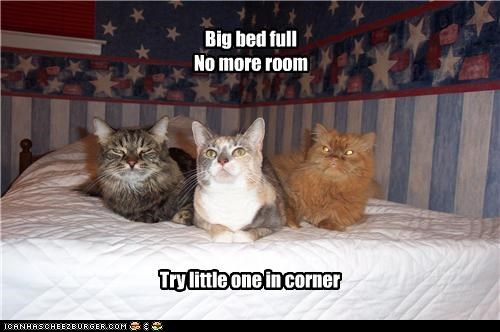 Big bed full No more room Try little one in corner
