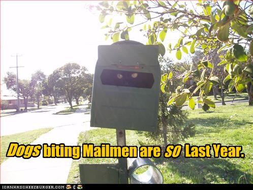 biting caption captioned cat dogs hiding last last year mailbox mailmen old sauce outdated SOON trend waiting year
