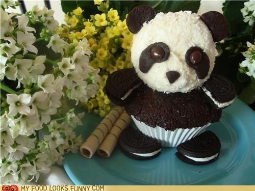 chocolate cupcake epicute flowers ice cream panda - 5005338880