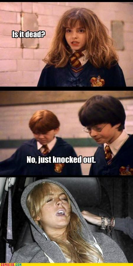 Harry Potter,lindsay lohan,troll