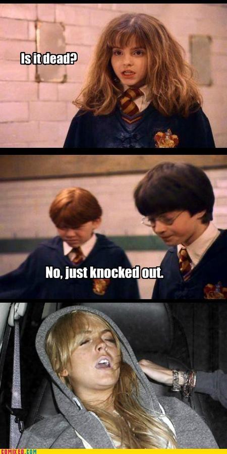 Harry Potter lindsay lohan troll - 5006379264