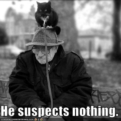 caption captioned cat he head leash lolwut man nothing old sleeping standing suspects waiting