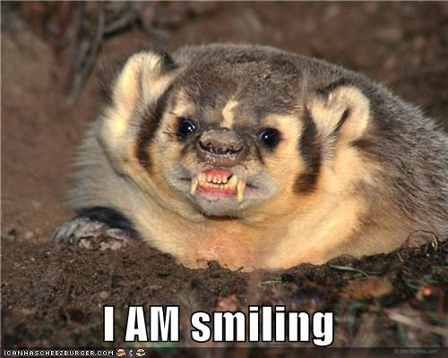 Awkward,badgers,caption,captioned,scary,smiling,teeth