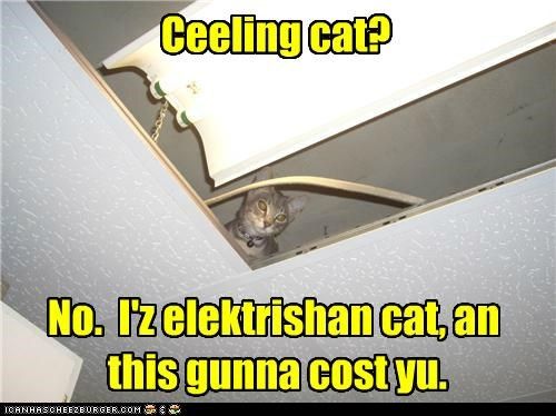 accident by the way caption captioned cat ceiling cat correction cost electrician fyi - 5009026816