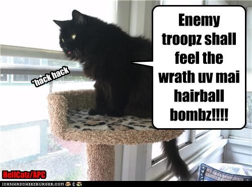 Enemy troopz shall feel the wrath uv mai hairball bombz!!!! *hack hack HellCatz/APC