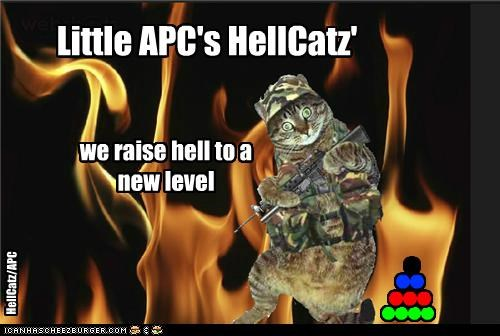 Official Little APC/HellCatz Pic