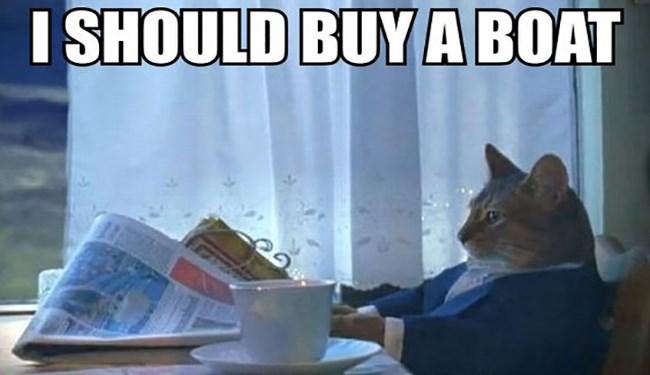 epiphany cat Memes funny - 5010181