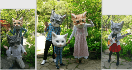 cosplay heads art realistic Japan Cats - 5010693