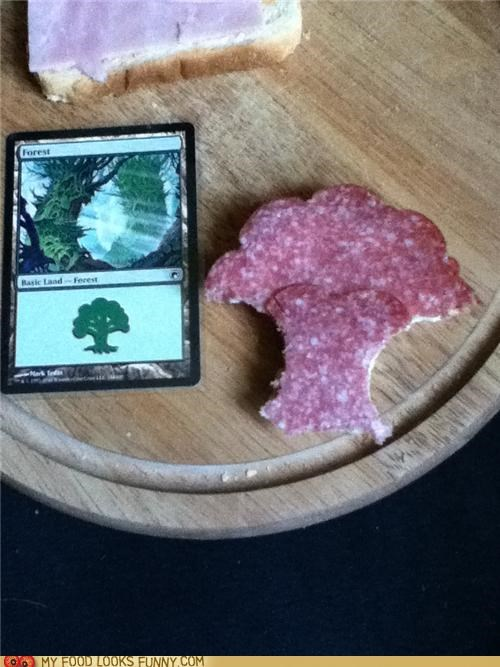 cards,game,magic cards,salami,sandwich,tree
