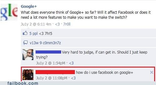 social networks,google plus