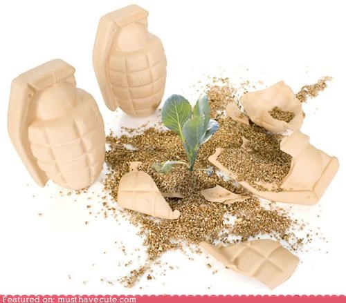 bomb,clay,flowers,grenade,seeds
