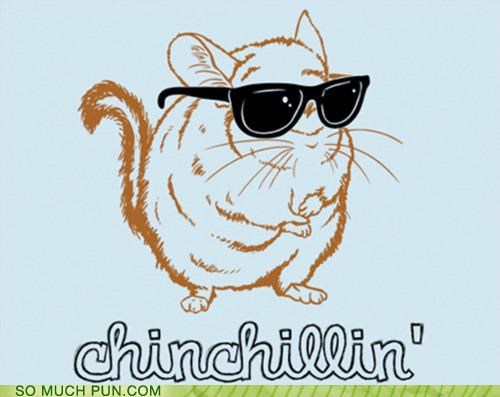 awesome chillin chilling chinchilla Hall of Fame portmanteau suffix verbified