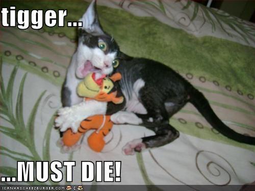 Cheezburger Image 501322496