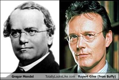 actors Anthony Stewart Head Buffy fictional characters Genetics glasses Gregor Mendel History Day pea plants Rupert Giles scientists television characters - 5013657344