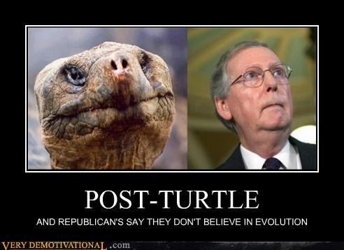 evolution,hilarious,people,Republicans,turtle