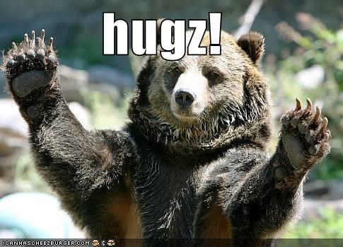 animals bears hugs I Can Has Cheezburger - 5014228992