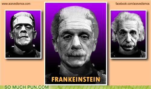 albert einstein einstein frankenstein juxtaposition literalism mashup - 5015279104