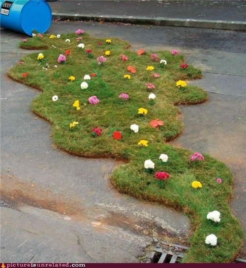 art grass liquid spill wtf - 5015669248
