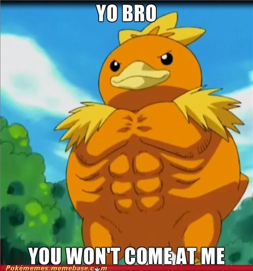 abs come at me bro pecs torchic - 5015827712