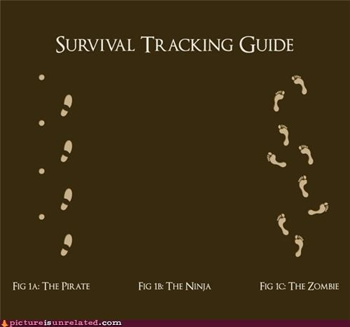 ninjas pirates tracking wtf zombie