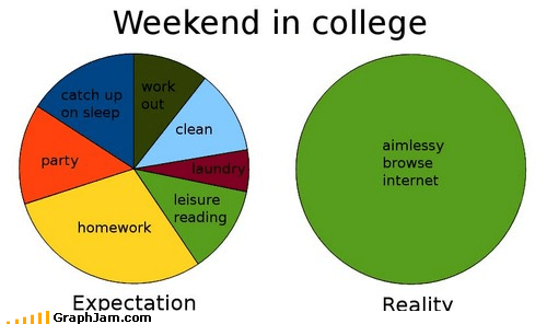 college,expectations,internet,Pie Chart,reality,weekends