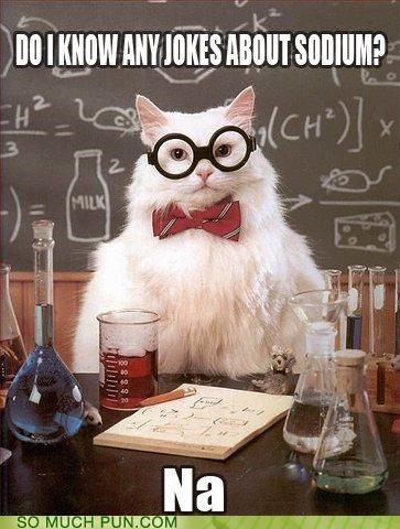 chemistry cat double meaning element Hall of Fame joke jokes literalism na periodic table sodium symbol