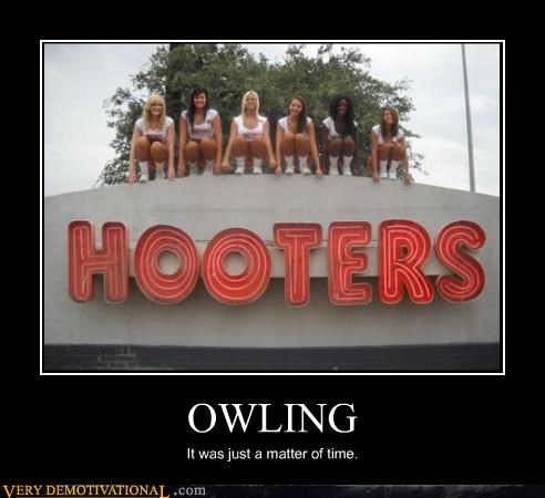 hilarious,hooters,obvious,owling,Sexy Ladies