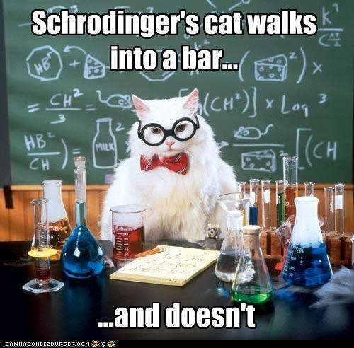 Schrodinger's cat walks into a bar... ...and doesn't