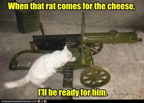 cannon,caption,captioned,cat,cheese,comes,prepared,rat,ready,weapon