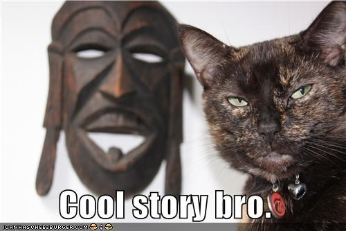 animals Cats cool story bro I Can Has Cheezburger mask