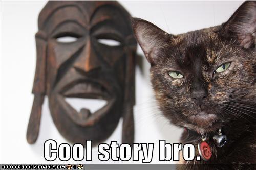 animals Cats cool story bro I Can Has Cheezburger mask - 5018131456