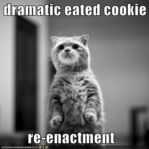 dramatic eated cookie  re-enactment