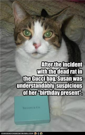 after,bag,birthday,box,caption,captioned,cat,dead,gucci,human,incident,present,rat,suspicious,understandable