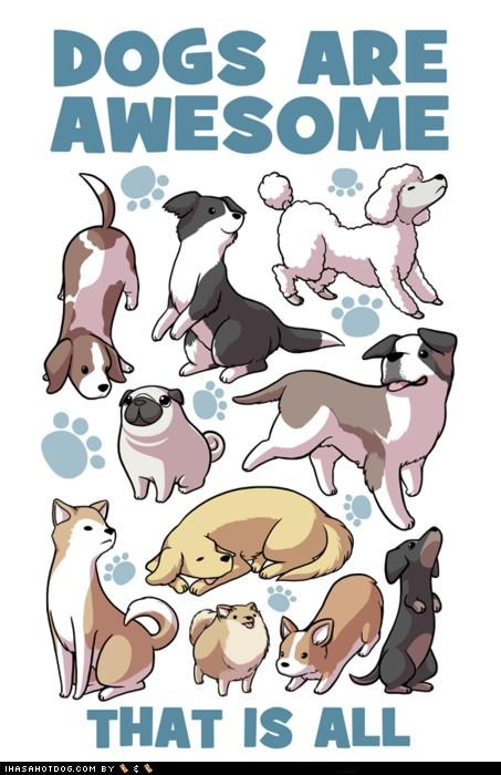 awesome beagle border collie corgi dachsund dogs dogs are awesome golden retriever paw prints pomeranian poodle pug saint bernard shiba inu - 5020151296