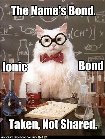 bond,chemistry cat,ionic,james bond,shared,stirred,taken