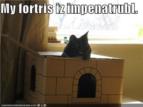 animals,biting,boxes,cardboard boxes,castle,Cats,fortress,I Can Has Cheezburger,impenetrable