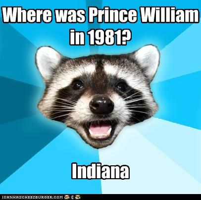 american tail diana Indiana Lame Pun Coon prince william - 5020648448