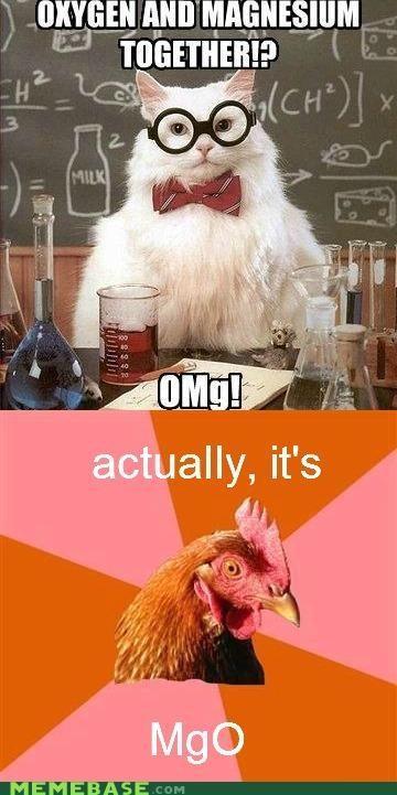 anti joke chicken chemistry cat omg oxygen together - 5020651264