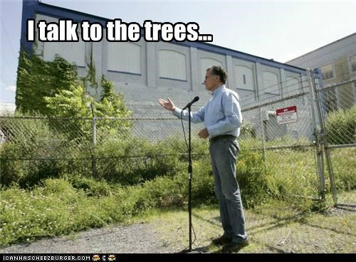 I talk to the trees...