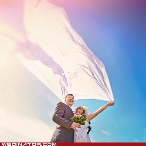 bride funny wedding photos groom veil - 5021262336